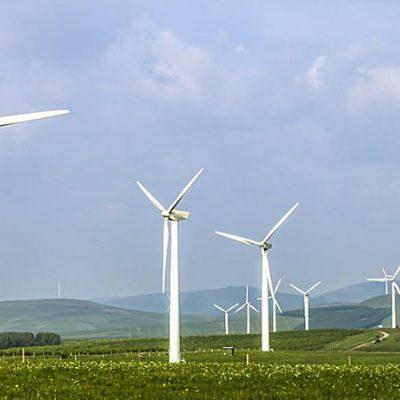 Promeg goes 100% Carbon Neutral